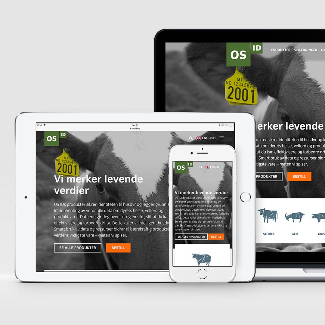 Bilde av hjemmeside som haus byrå har laget for os id