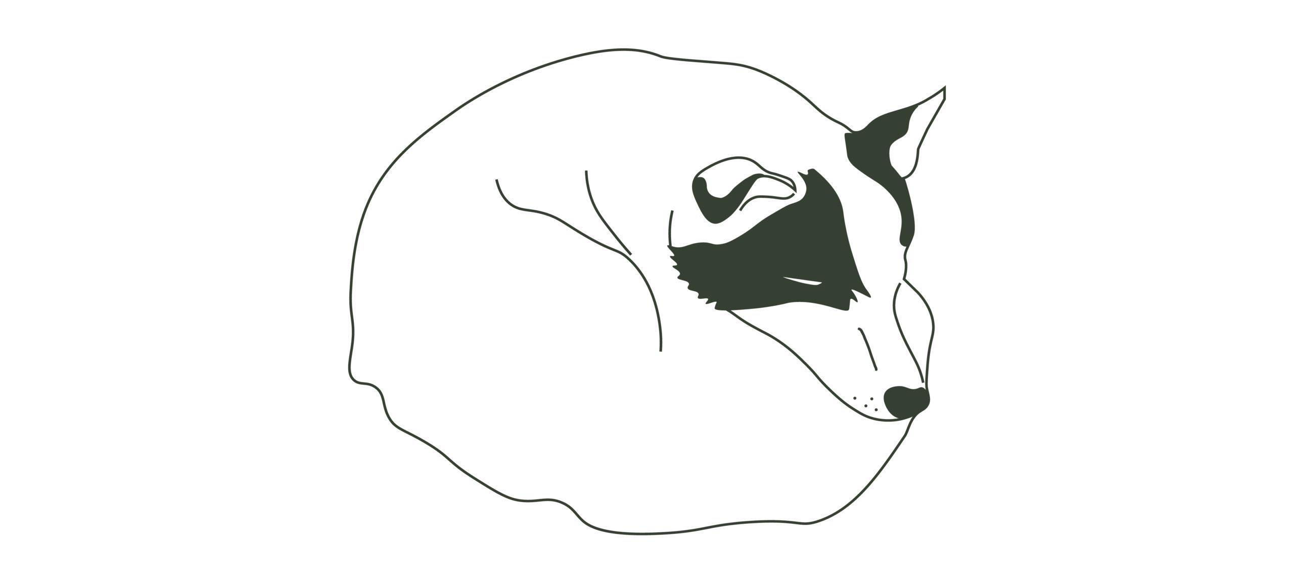 Illustrasjon for Jotunheimen Husky Lodge, laget av Haus Byrå
