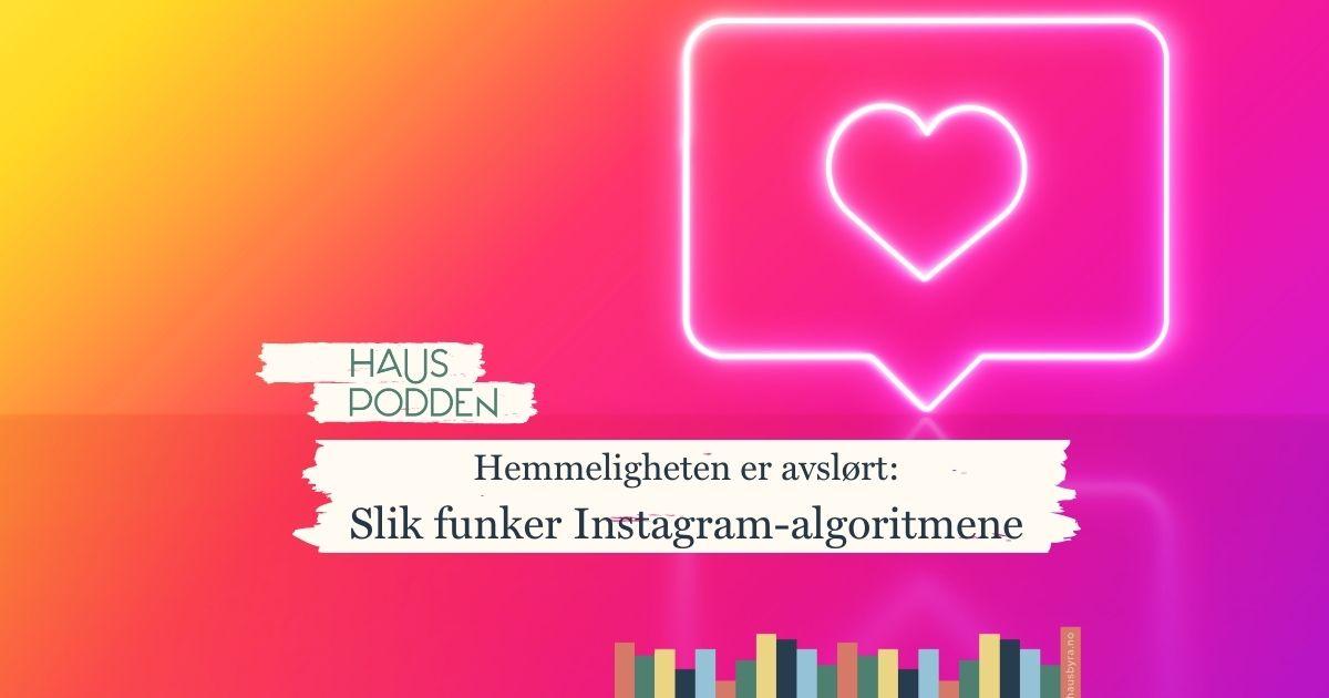hauspodden slik fungerer instagram-algoritmene